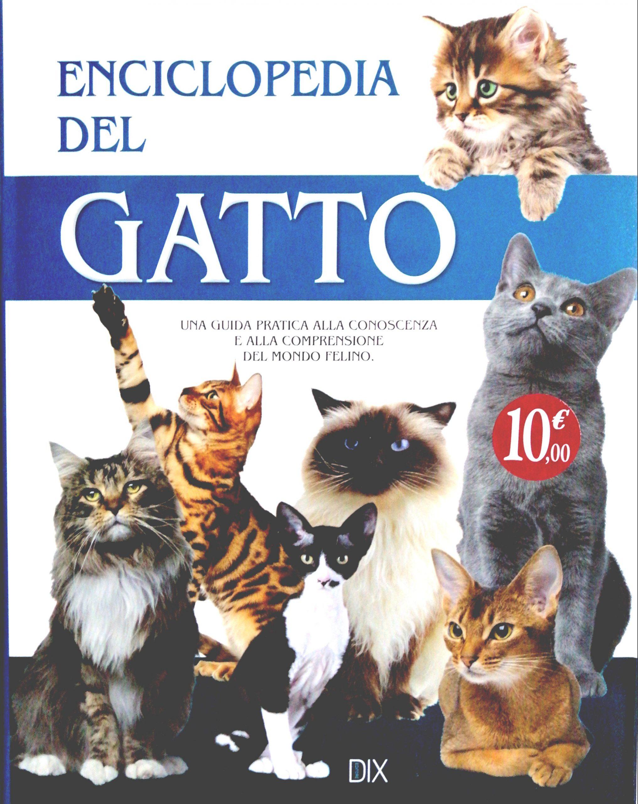 Tutto quello che vuoi sapere sui gatti